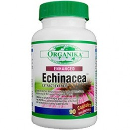 ECHINACEA Fortificata (Enhanced); 600 mg 90 capsule