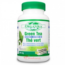 Extract Concentrat de CEAI VERDE Forte (95%): 60 capsule 300 mg