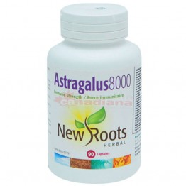 ASTRAGALUS 8000 90 capsule (8000 mg/ cps)